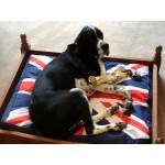 Dog Beds & Bits